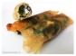 rollitos de espinacas, queso de cabra y espinacas